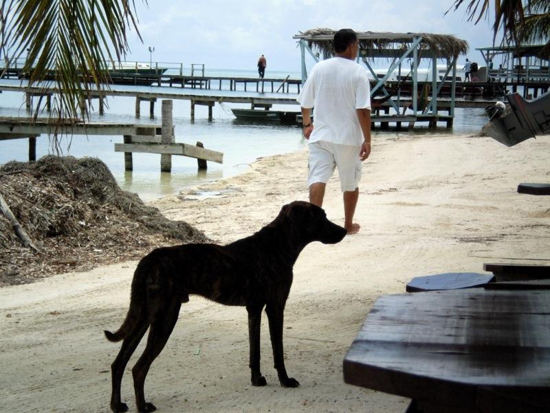 America Centrale - Belize - Caye Caulker