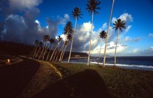 Samoa - Saleapaga - lungo la costa sud