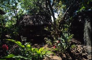 Samoa - Apia - Hidden Garden