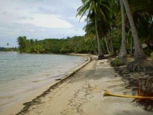 America Centrale - Panama - Bocas del Toro - playa Bocas del Drago
