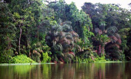 20/09/2008 – Costa Rica