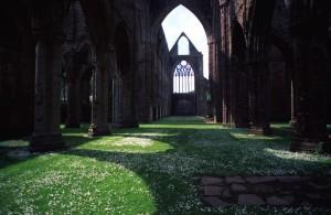 Galles - Tintern Abbey