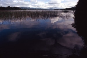 Irlanda - Yeats Contry - Innisfree