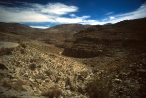 Bolivia - Ande - sierre boliviane