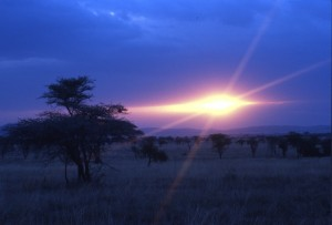 Tanzania - tramonto al Serengeti