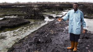 Delta Niger - pollution