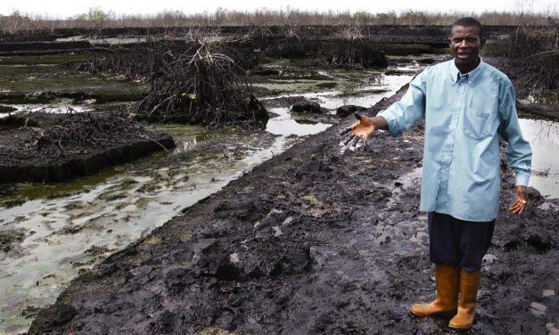 Delta Niger vs Gulf of Mexico. Oil – petrolio