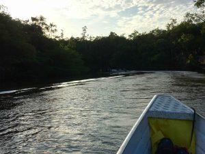 Rio Preto da Eva - Amazzonia