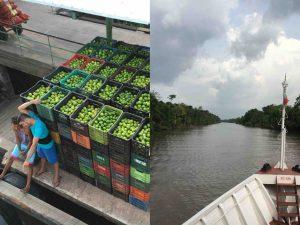 day on the Big River - Amazonas