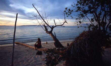 Fiji 2003