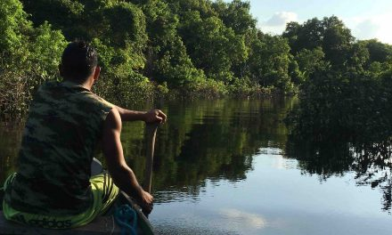 Amazon river: tra Peru Colombia e Brasile 2016