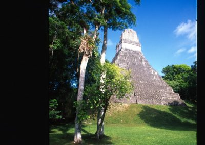 Big Maya's pyramid - Tikal - Guatemala, Central America