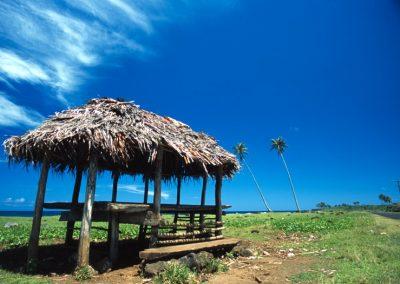 Bus Station - Fiji, Samoa