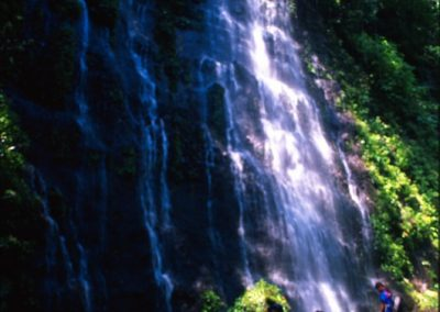 Forest and Falls around Juayua - Ruta de Las Flores - El Salvador, Central America