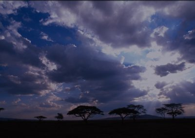 Incredible Skyline in Serengeti National Park - Tanzania
