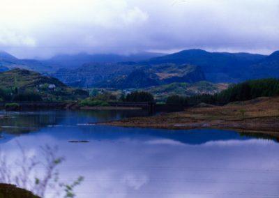 Lake - Wales