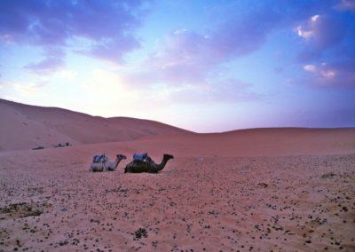 marocco_iii_33_1