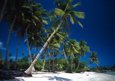 Paradise Beach - Fiji, Samoa