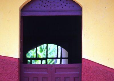 Purple and Yellow - Leon - Nicaragua, Central America