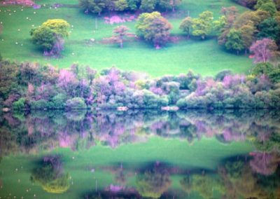 Reflection - Wales