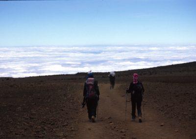 Start of the Descent - Kilimanjaro Trekking - Tanzania