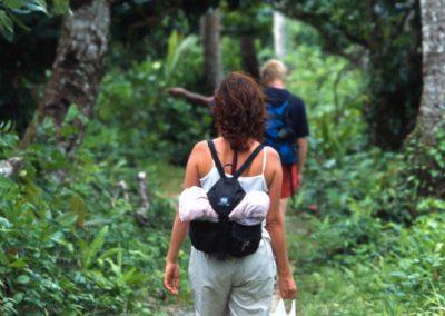 Trekking in Lavena Coastal Walk - Fiji