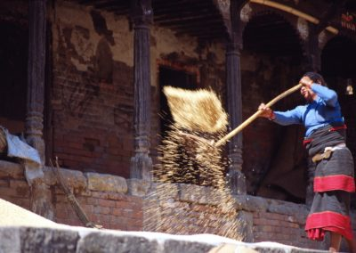 Woman work with RIce - Nepal