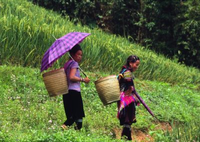 Women in traditional Clothes - Sapa Valley , Vietnam