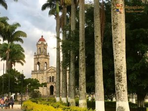 church and palms central square guadalupe colombia 300x225 - Colombia 2017