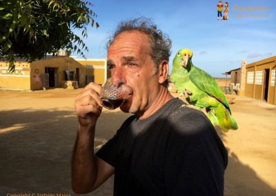 Coffe with parrot - La Guajira, Colombia