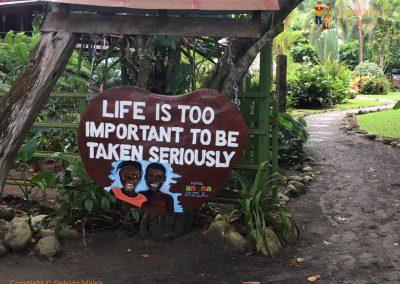 Life - Puerto Viejo, Costa Rica