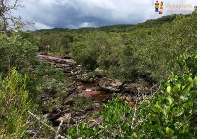 River's view - Cano Cristales - La Macarena district, Colombia