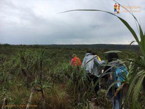 trekking in cano cristales la macarena district colombia 300x225 - Colombia 2017