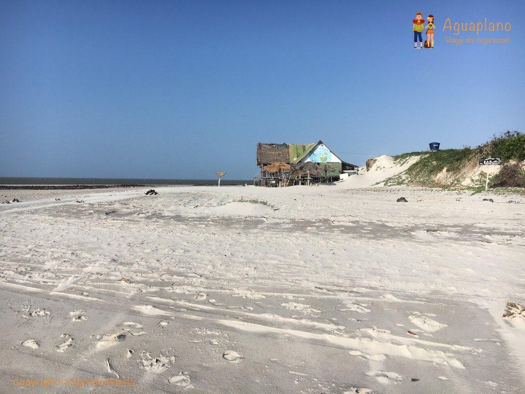 beach bar algodoal brazil - Algodoal, Brasile: un'isola incantata