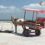 Algodoal, Brasile: un'isola incantata